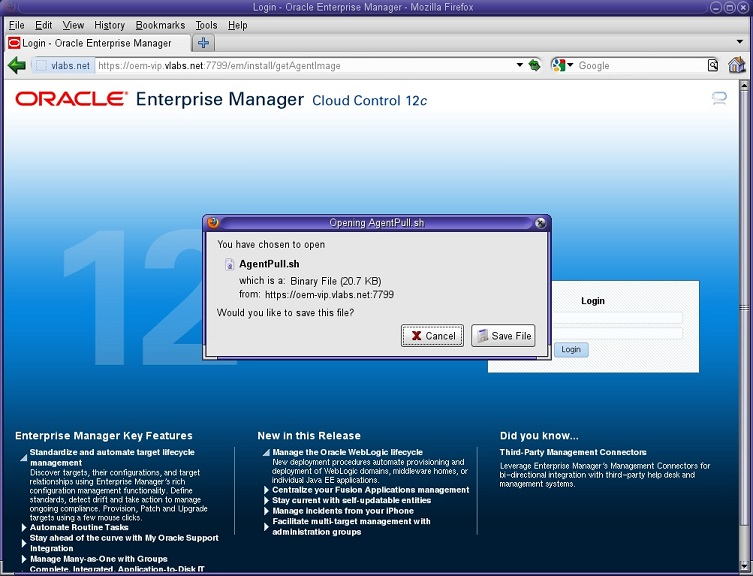 Oracle 12c Enterprise Manager Installation - page 7